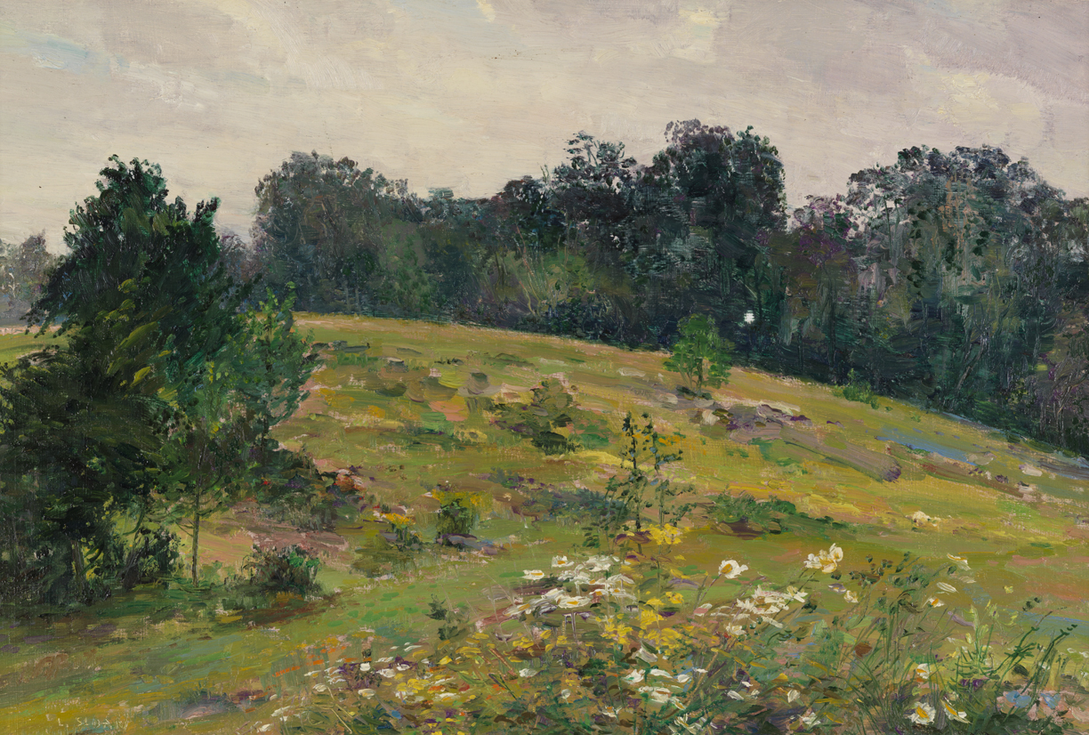 Untitled [Landscape with white and yellow wild flowers]