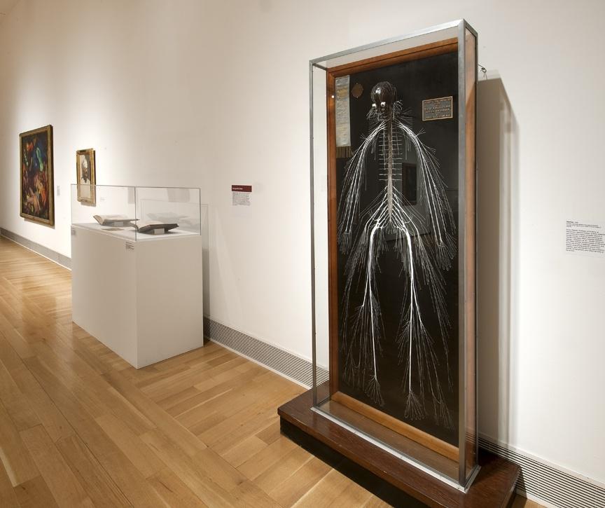 Anatomy/Academy   PAFA - Pennsylvania Academy of the Fine Arts