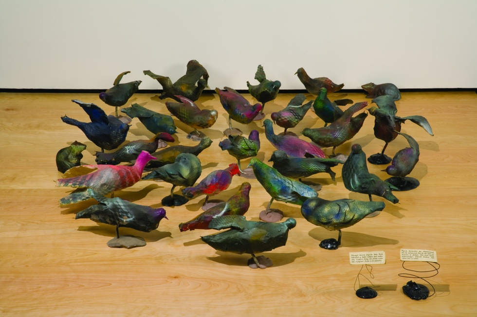 <p>Christy Rupp, Pigeon Flock with Rats, 1980</p>