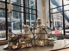 Rhona Hofmeyr's installation in the Broad Street Studio
