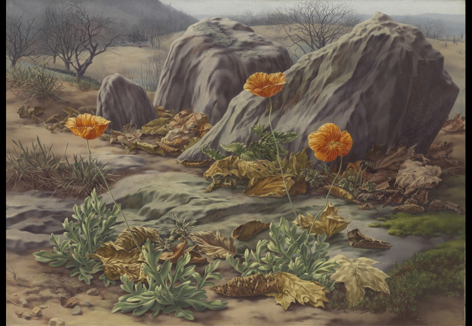 <em>Landscape with Poppies</em>, 1939, Oil on canvas, 18 x 25 1/8 in., The Museum of Modern Art, New York, Gift of Abby Aldrich Rockefeller, 1941, Art © The Educational Alliance, Inc./Estate of Peter Blume/Licensed by VAGA, New York
