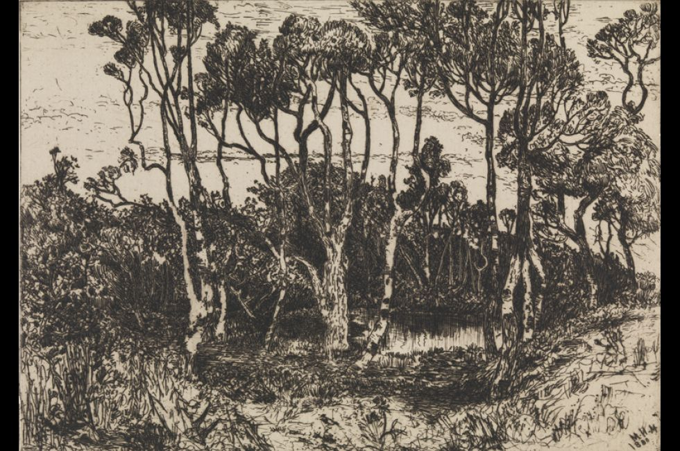 "Mary Nimmo Moran, ""Solitude"" (1880). Etching on off-white wove paper. John S. Phillips Collection."