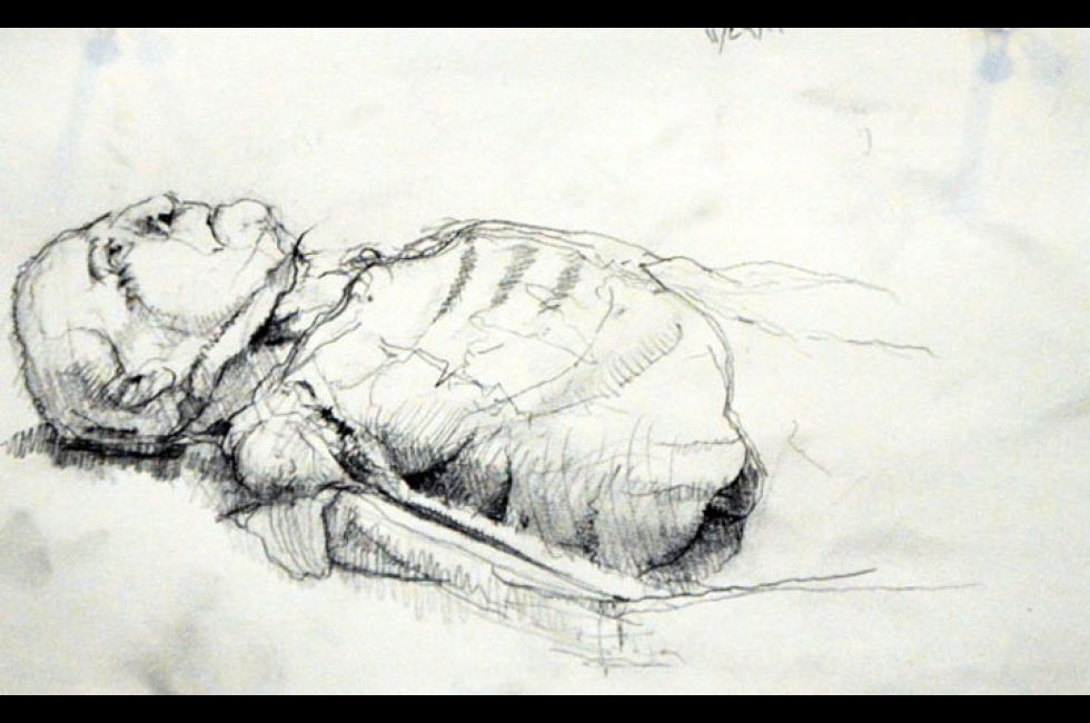 Cadaver drawing by Angus Ryan.