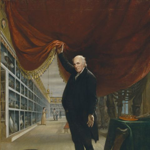 "charles willson peale, ""the artist in his museum"""