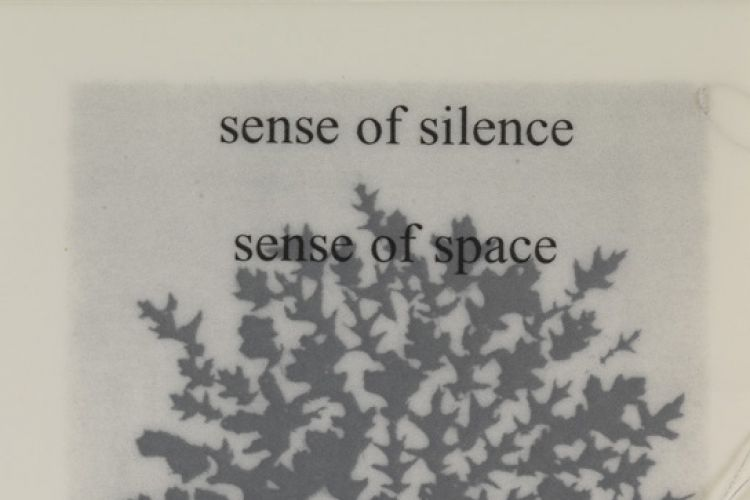"Sense of Silence from ""Interviews with the Contemplative Mind"" by Lesley Dill"